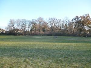An image of Woodrow Pilling Park.Photographer K. Gaffney 2012